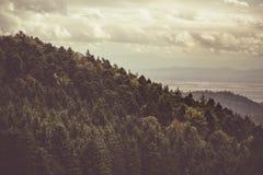 De heuvels van de Elzas Stock Fotografie