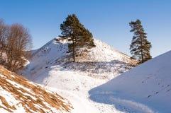 De heuvels van Kernave stock foto's