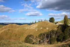 De heuvels van Nieuw Zeeland Royalty-vrije Stock Foto's
