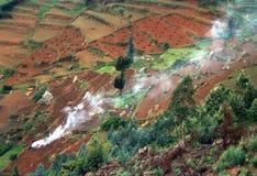 De Heuvels van Nilgiri, India Royalty-vrije Stock Afbeeldingen