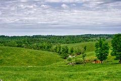De Heuvels van Ozark Stock Afbeelding