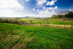 De Heuvels van Toscanië Stock Foto