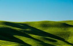 De heuvelsschaduw van Toscanië Stock Foto