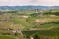 De heuvelswijngaarden van landschapslanghe Wijnbouw dichtbij Barolo, Piemonte, Itali?, Unesco-erfenis Barolo, Nebbiolo, stock foto
