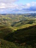 De heuvelvorming van het platteland Stock Afbeeldingen