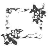 De hibiscus bloeit frame Stock Afbeelding