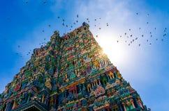 De Hindoese tempel van Meenakshi in Madurai Stock Foto's