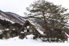 De historische Dorpen van shirakawa-gaan Stock Afbeeldingen