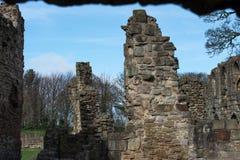 De historische ruïnes van de Basingwerkabdij in Greenfield, dichtbij Holywell-Noord-Wales Stock Fotografie