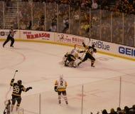 But de hockey sur glace d'ours bruns d'Eurasie Images libres de droits