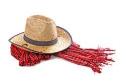 De hoed van de cowboy Stock Afbeeldingen