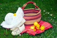 De hoed van de de picknicktuin van de weide stock foto's