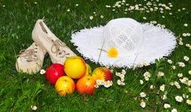 De hoed van de de picknicktuin van de weide stock afbeeldingen
