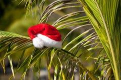 De hoed van de rode Kerstman het hangen op palm royalty-vrije stock foto's