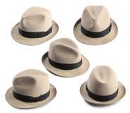 De hoed van Fedora Stock Foto