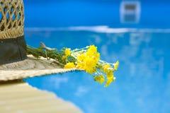 De hoed van het stro in de pool, de zomer stock foto's
