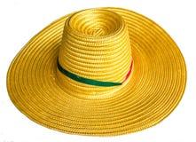 De hoed van het stro met kleurenlint Stock Afbeeldingen