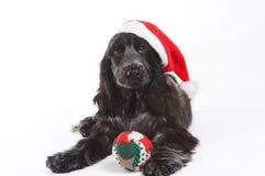De hoed van Kerstmis Stock Foto's