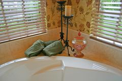 De Hoek van de badkamers Stock Fotografie