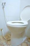 De hoek van de toiletruimte met open zeteldekking Stock Afbeelding