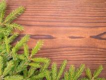 De hoek van kerstboomtakken op de donkere achtergrond Stock Foto's