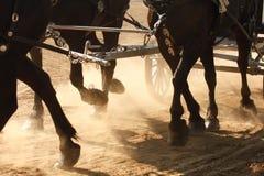 De Hoeven van het paard stock fotografie