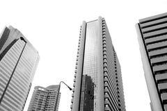 De hoge bouw in hoofdstad Stock Afbeeldingen