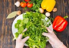 De hoge hoekmening van groenten, dient handschoen gezette mengeling van sla in stock foto