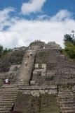 De Hoge Tempel bij de Archeologische Plaats van Lamanai Royalty-vrije Stock Foto's