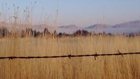 De Hoge Woestijn van de de herfstmist stock fotografie