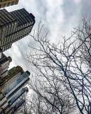 De hogere gebouwen van de het westen zijtroef Stock Fotografie