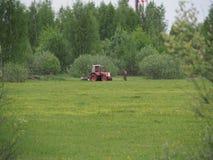 De hogere landbouwer op het gebied onderzoekt de tractor stock afbeelding