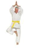 De hogere mens in karate stelt royalty-vrije stock foto's