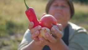 De hogere tuinman houdt in zijn handen een gewas van groenten op de achtergrond van de tuin Zonnebloemzaden - zaadfonds stock footage