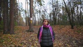 De hogere vrouw loopt in de herfstbos, bekijkend de bovenkanten van de bomen stock video