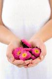 De holdingsbloemen van de vrouw Stock Foto