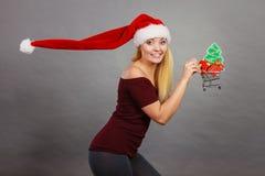 De holdingsboodschappenwagentje van de kerstmanvrouw met Kerstmisgiften stock fotografie