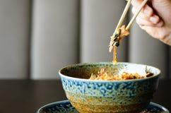 De holdingseetstokjes van de mensen` s hand over een plaat van Japanse, Thaise, Chinese maaltijd - rijst, paddestoel, groenten Ko Stock Afbeelding