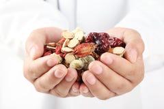 De holdingshandvol van de arts van Chinese kruidengeneeskunde. stock foto's