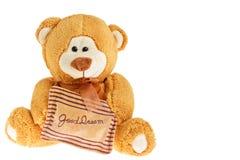 De holdingshoofdkussen van de teddybeer Stock Foto's