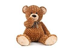 De holdingsmond van de teddybeer Stock Fotografie