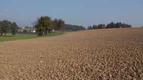De hommel schoot het vliegen dicht bij de grond van een gecultiveerd gewassengebied op landbouwgrond in het platteland stock videobeelden