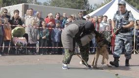 De hond bijt bandiet, prestaties stock video
