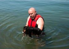 De hond die van Weiner leert te zwemmen stock afbeeldingen