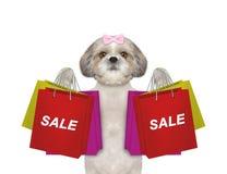 De hond gaat het winkelen en verkoop royalty-vrije stock afbeeldingen