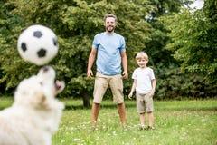 De hond jongleert met voetbal met neus stock afbeeldingen