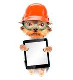 De hond kleedde zich als bouwer met tabletpc Stock Foto's