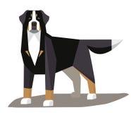 De Hond minimalistisch beeld van de Berneseberg Royalty-vrije Stock Fotografie