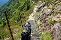 De hond op de weg Er is de mening van berg Krakonos en Kozi hrbety aan de vallei royalty-vrije stock afbeelding