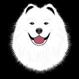 De hond samoyed, vriendpuppy Stock Afbeeldingen